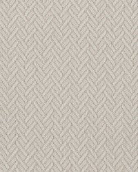 Beige Crypton Home Fabric  Focus Pearl