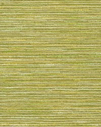 Green Crypton Home Fabric  Emere Lime