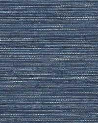 Blue Crypton Home Fabric  Emere Indigo