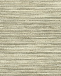Brown Crypton Home Fabric  Emere Driftwood
