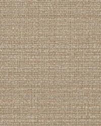Brown Crypton Home Fabric  Hybrid Wheat