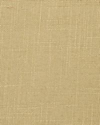 Crypton Home Fabric  Evoke Sisal