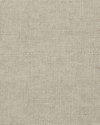 Crypton Home Fabric  Evoke Fog