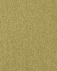 Green Crypton Home Fabric  Homestretch Olive