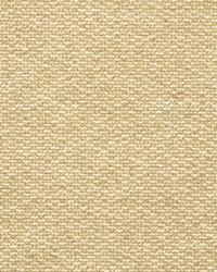 Crypton Home Fabric  Terrazzo Honey