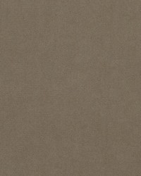 Brown Crypton Home Fabric  Premier Velvet Earth