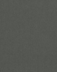 Crypton Home Fabric  Premier Velvet Flannel