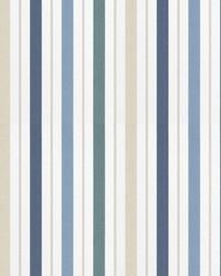 Transient Stripe Indigo by