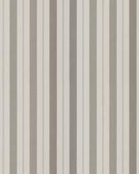 Transient Stripe Pewter by