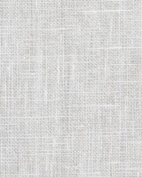 Silver Pure Elegance Fabric  Flaunting Silver