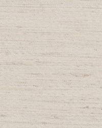 Chromatics Vol XXV Fabric Fabricut Fabrics Pagis Flax