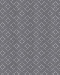 Silver Chromatics Vol XXV Fabric Fabricut Fabrics Tone Diamond Platinum