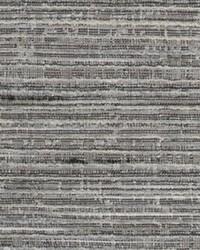 Chromatics Vol XXV Fabric Fabricut Fabrics Onomatopoeia Pepper