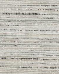 Grey Chromatics Vol XXV Fabric Fabricut Fabrics Onomatopoeia Dove