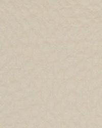 Beige Chromatics Vol XXV Fabric Fabricut Fabrics Caesura Cream