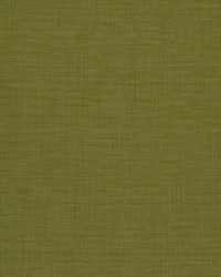 Zeblin Kiwi by