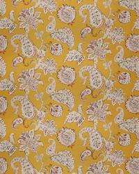 Colourist Marigold by