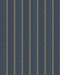 Film Stripe Denim by