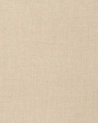 Rad Texture Parchment by