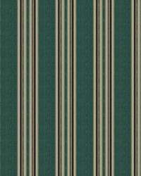 Dailies Stripe Spa by