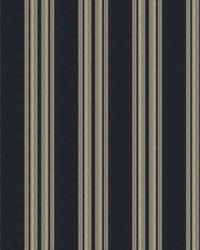 Dailies Stripe Ocean by