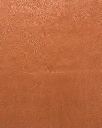 Saratoga Copper by