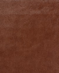 Cleanable Faux Leather Saratoga