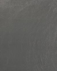Saratoga Grey by