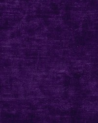 Wimbledon Electric Violet by