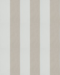 Caravana Stripe Salt by