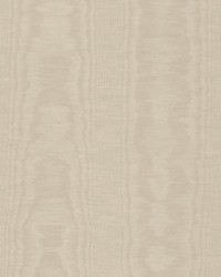 Trend 01001 Champagne Fabric