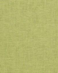 01838 Eucalyptus by