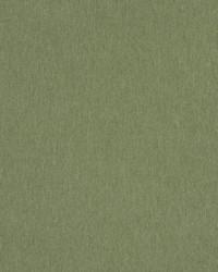 03350 Kiwi by
