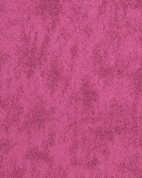 03791 Magenta by