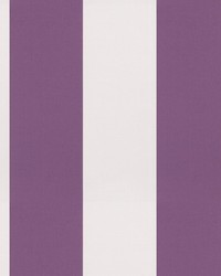 03800 Violet by