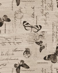 Black French Country Toile Fabric  03843 Ebony
