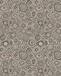 Trend 03896 Shale Fabric