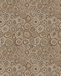 Trend 03896 Mineral Fabric