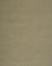 03869 Buckwheat by