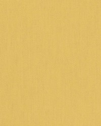 02345 Mustard by