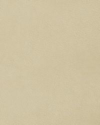 04207 Parchment by