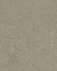 04209 Limestone by