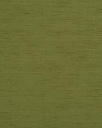 04385 Asparagus by