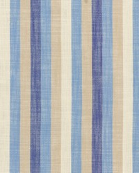 Doheny Stripe Indigo by