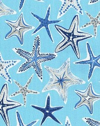 P K Lifestyles PKL OD Stars Collide Nautical Fabric