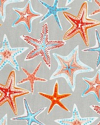P K Lifestyles PKL OD Stars Collide Pewter Fabric