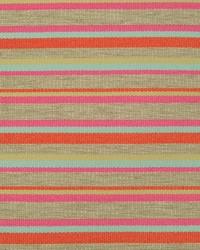 Boardwalk Stripe Confetti by