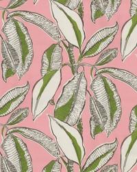 OD Jungle Jive Flamingo by