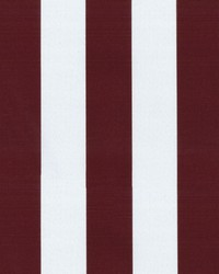 OD Canopy Stripe Toast by