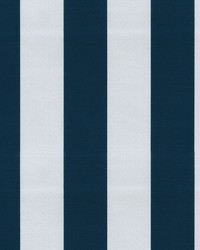 OD Canopy Stripe Midnight by